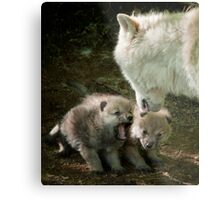 Arctic Wolf With Pup Metal Print