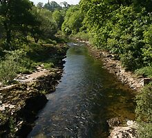 River Dart-Buckfastleigh Devonshire UK by Rich51