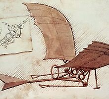 Da Vinci's flying machine by Ednathum