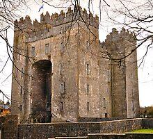 Bunratty Castle by Finbarr Reilly