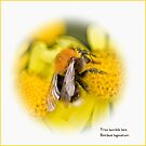 Tree bumble bee by inkedsandra