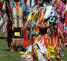Pow Wow Dancer by Linda Davidson