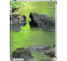 Old Rock's Cool Bath Water iPad Case/Skin