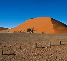 Climbing the Dune, Reaching the Sky by ValeskaE