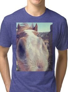Quirky Little Pony  Tri-blend T-Shirt