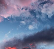 The roof is on fire by Marina Curac