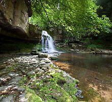 West Burton Falls by Carl Mickleburgh