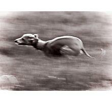 Speed! Photographic Print