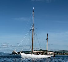 Ketch by Lynn Bolt