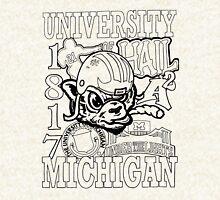 University of Michigan Pullover