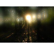Through the misty fog Photographic Print