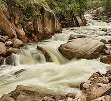 Cascading Colorado Rocky Mountain Stream by Bo Insogna