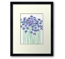 Purple Daisies in Watercolor & Colored Pencil  Framed Print