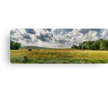 Farmers Field Canvas Print