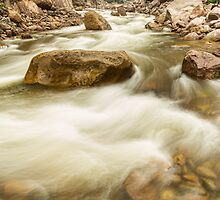 Hypnotized By A Rocky Mountain Stream by Bo Insogna