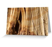Cracking Wood Greeting Card
