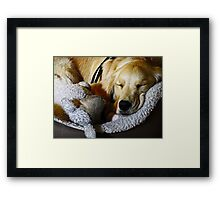 Sleepy Mia Framed Print