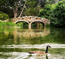 Bridge Over the Stow by Cupertino