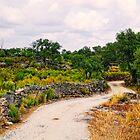 a country lane, Marvao, Alto Alentejo, Portugal by Andrew Jones