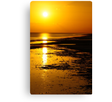 Another Lonely Day In Paradise Canvas Print