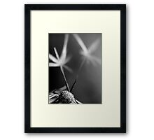 Fairies dancing Framed Print