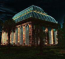 Tree House, Botanic Gardens, Edinburgh by HJIrvine