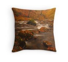 Moness Burn, Aberfeldy, Perthshire, Scotland. Throw Pillow