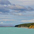 Lake Pukaki by Peter Hammer