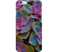 Purple Blue Green Succulent Cactus Plant iPhone Case/Skin