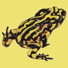 Corroboree frog single tee by Laura Grogan