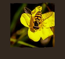 Hover fly on yellow flower Unisex T-Shirt
