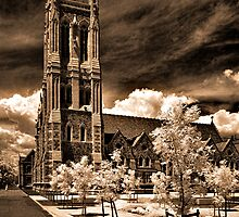 St Francis Xavier Cathedral  by Andrew Dickman