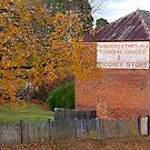 Robert Northey General Produce - Hill End NSW Australia by Bev Woodman