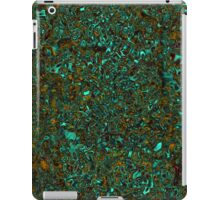 Wonder Rock Stone iPad Case/Skin