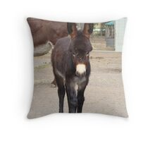 A Donkey Foal Throw Pillow