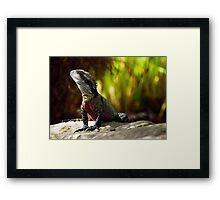 Lizard of Oz - Afternoon Sun Framed Print