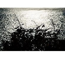 Shimmering sea - Cascais, Portugal Photographic Print