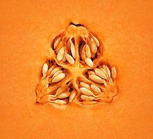 Cantaloupe Melon Inside by johanswanepoel