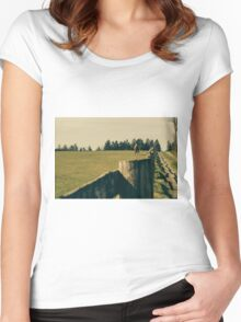 Horse In A Pasture Women's Fitted Scoop T-Shirt