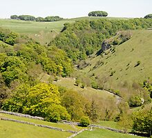 Hilltop View Above Mill Dale by Rod Johnson