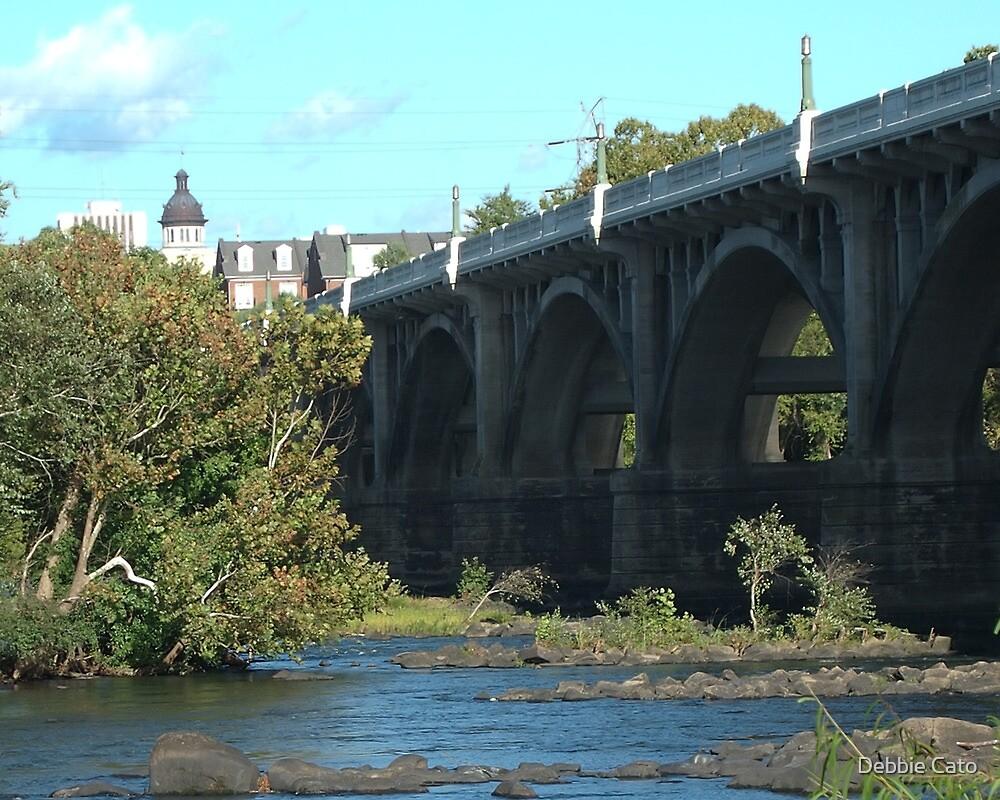 Gervais Street Bridge, Columbia, SC by Debbie Cato