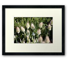 Wild Flora II 8995 Framed Print