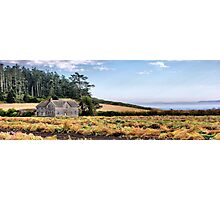 Ferry House Panorama Photographic Print