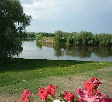 Kolomna. Red flowers by ThreeHi