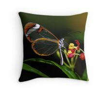In a different light........ Throw Pillow