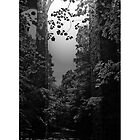 Archway With Stream by TheStand