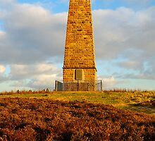 Captain Cook Monument, Easby Moor, Great Ayton, North Yorkshire Moors by James Paul