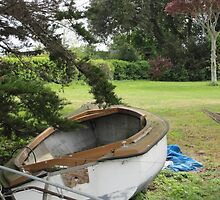 First there were house boats, now there are garden boats. by ellismorleyphto