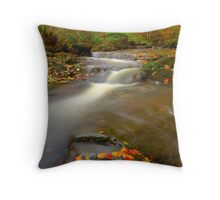 May Beck, Littlebeck, North Yorkshire Moors Throw Pillow