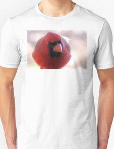 """""""Which came first, the egg or the dinosaur?"""" T-Shirt"""